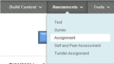 Selecting Assignment
