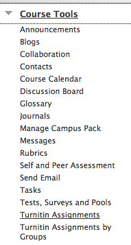 turnitin assignments option