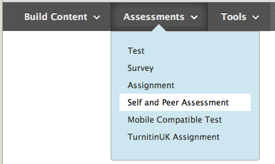 self and peer assessment