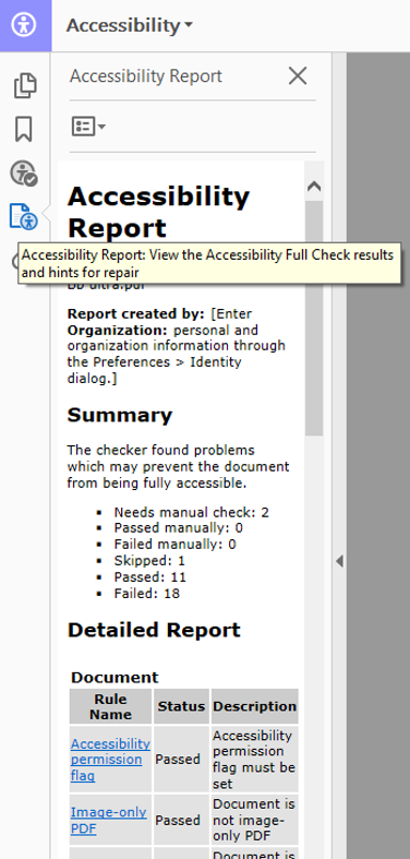 accessibility report