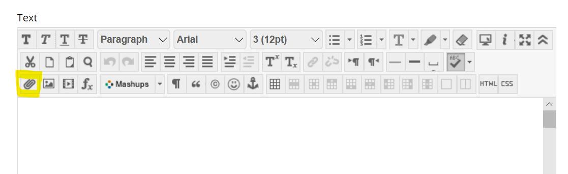 insert file button