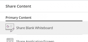 Clicking Share Blank Whiteboard