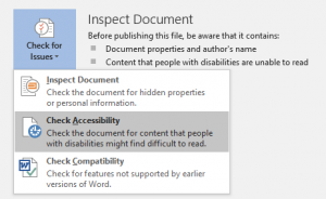 Inspect document with drop down menu and Check Accessibility highlighted