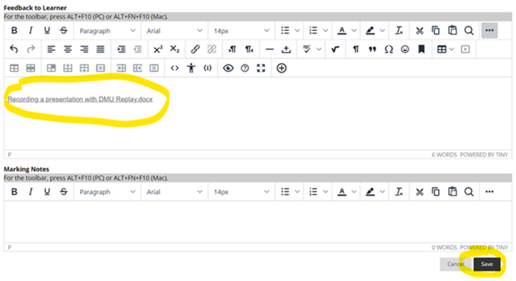 file embedded in document